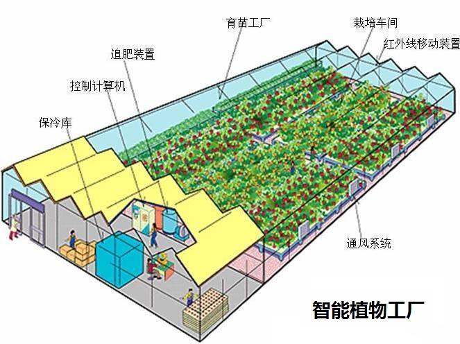 杭州维讯生物科技有限公司phenotyping